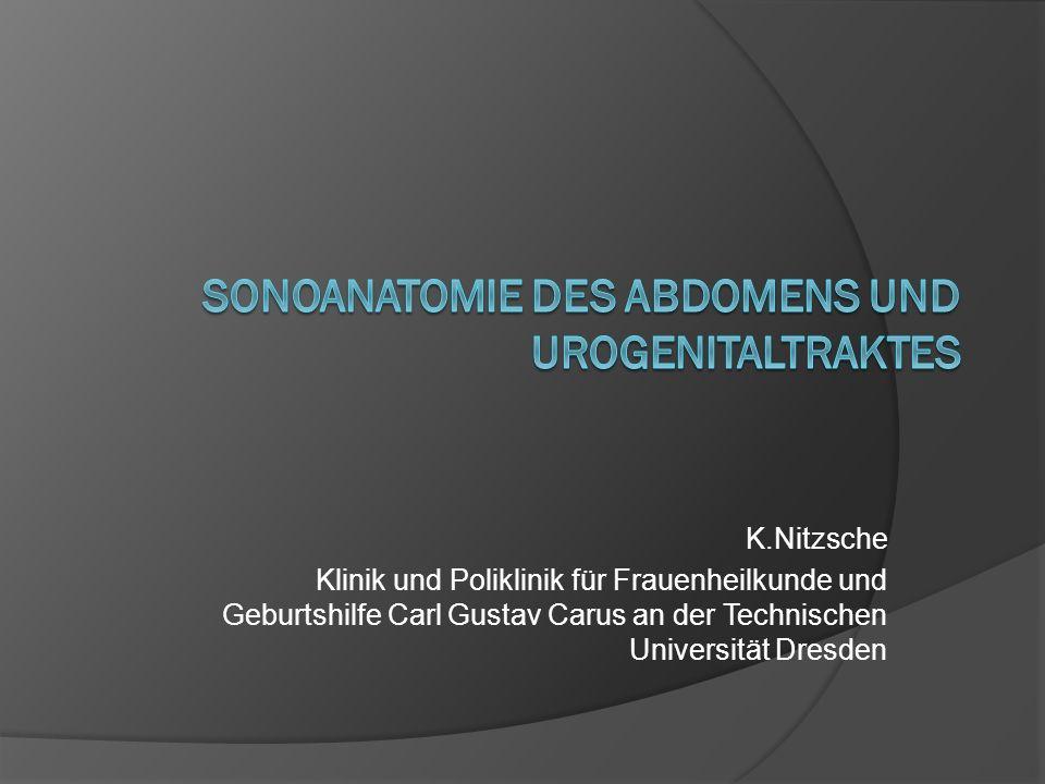 K.Nitzsche Klinik und Poliklinik für Frauenheilkunde und Geburtshilfe Carl Gustav Carus an der Technischen Universität Dresden