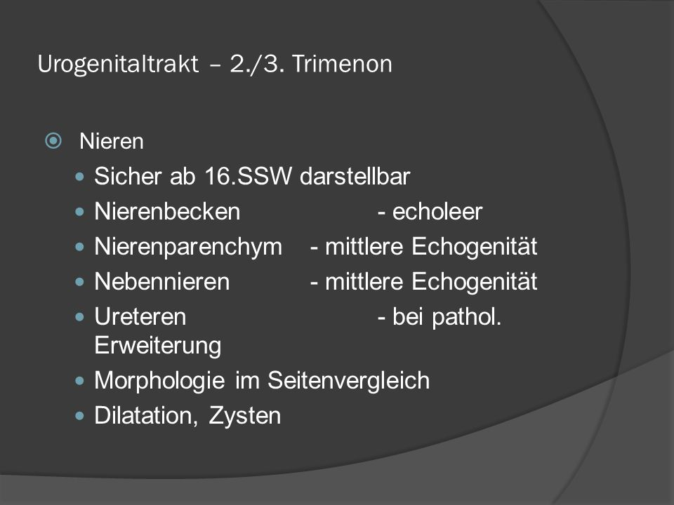 Urogenitaltrakt – 2./3.