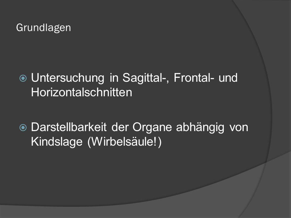 Grundlagen Untersuchung in Sagittal-, Frontal- und Horizontalschnitten Darstellbarkeit der Organe abhängig von Kindslage (Wirbelsäule!)