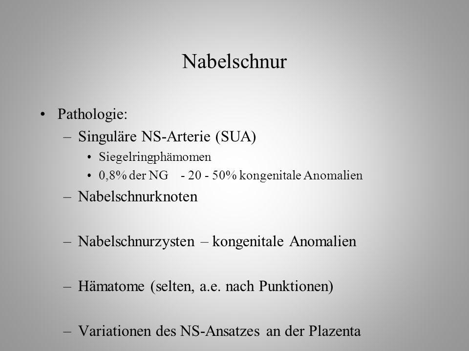 Nabelschnur Pathologie: –Singuläre NS-Arterie (SUA) Siegelringphämomen 0,8% der NG- 20 - 50% kongenitale Anomalien –Nabelschnurknoten –Nabelschnurzysten – kongenitale Anomalien –Hämatome (selten, a.e.