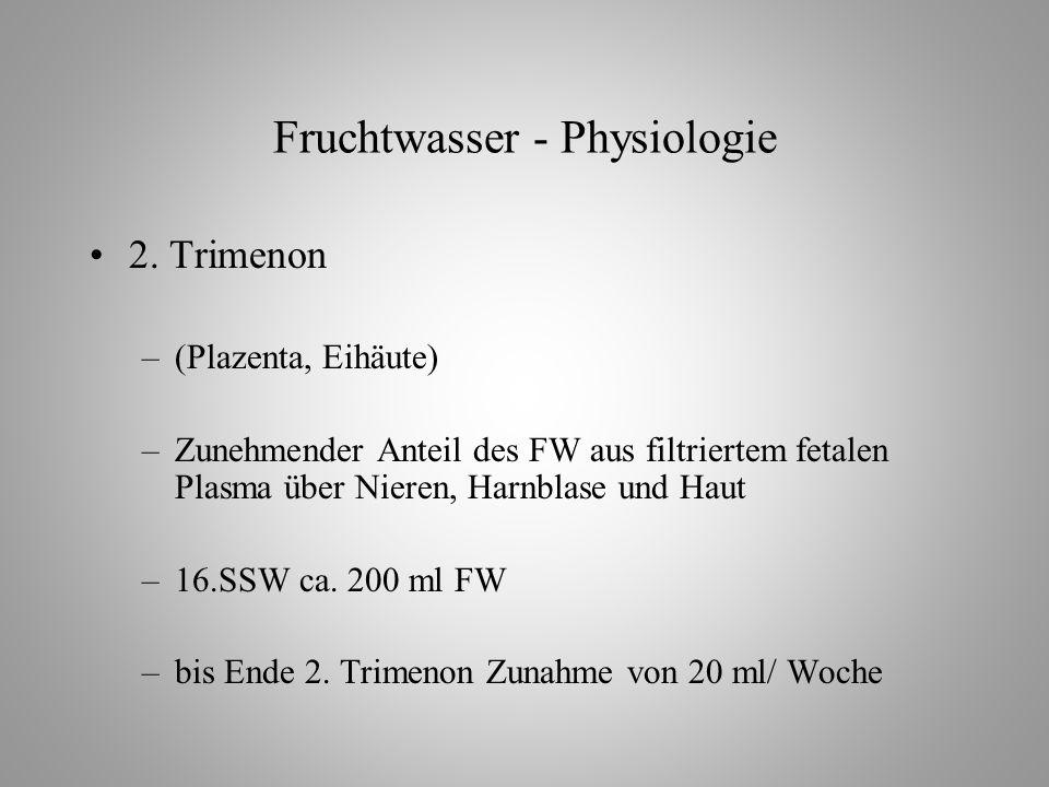 Fruchtwasser - Physiologie 2.