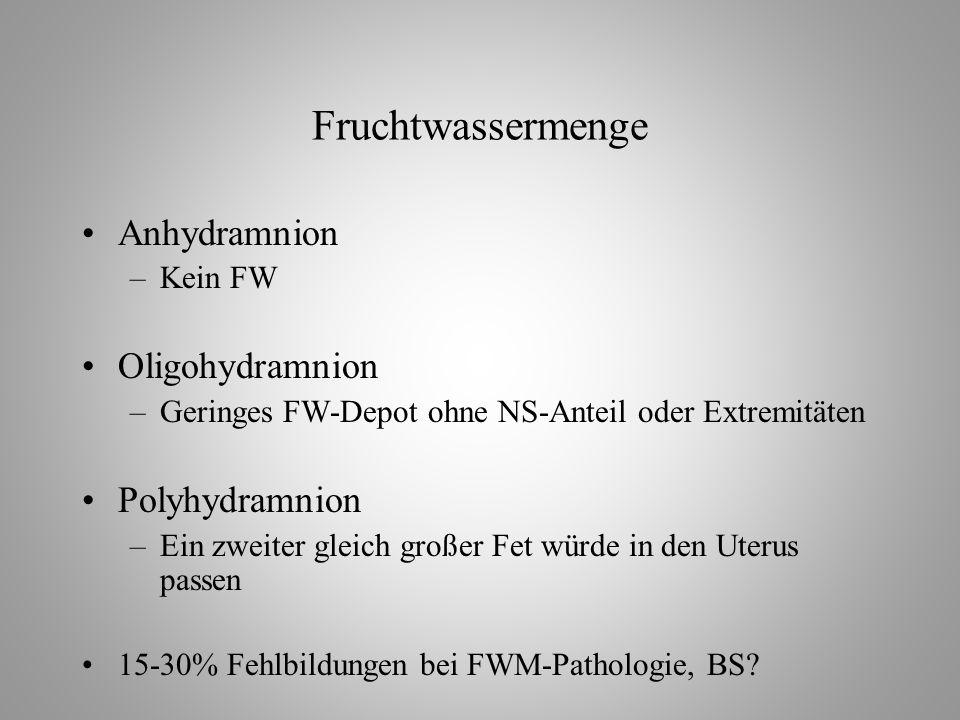 Fruchtwassermenge Anhydramnion –Kein FW Oligohydramnion –Geringes FW-Depot ohne NS-Anteil oder Extremitäten Polyhydramnion –Ein zweiter gleich großer Fet würde in den Uterus passen 15-30% Fehlbildungen bei FWM-Pathologie, BS?