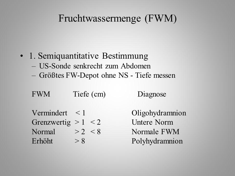 Fruchtwassermenge (FWM) 1.