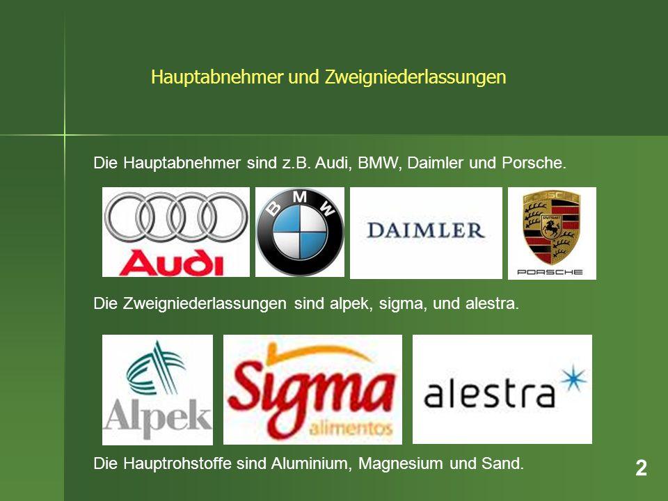 Die Hauptabnehmer sind z.B. Audi, BMW, Daimler und Porsche. Die Zweigniederlassungen sind alpek, sigma, und alestra. Die Hauptrohstoffe sind Aluminium