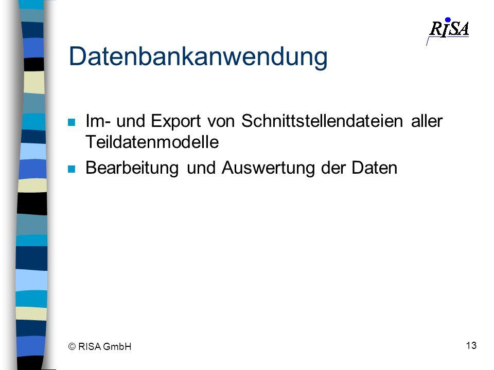 © RISA GmbH 13 Datenbankanwendung n Im- und Export von Schnittstellendateien aller Teildatenmodelle n Bearbeitung und Auswertung der Daten