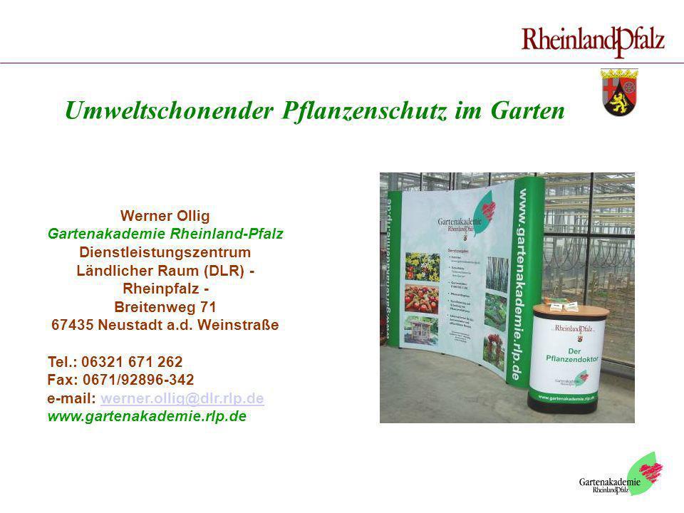 Werner Ollig Gartenakademie Rheinland-Pfalz Dienstleistungszentrum Ländlicher Raum (DLR) - Rheinpfalz - Breitenweg 71 67435 Neustadt a.d. Weinstraße T
