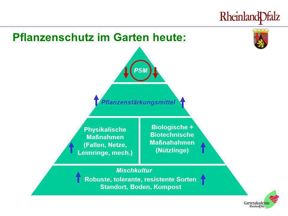 Robuste, tolerante, resistente Sorten Standort, Boden, Kompost Mischkultur Physikalische Maßnahmen (Fallen, Netze, Leimringe, mech.) Biologische + Bio