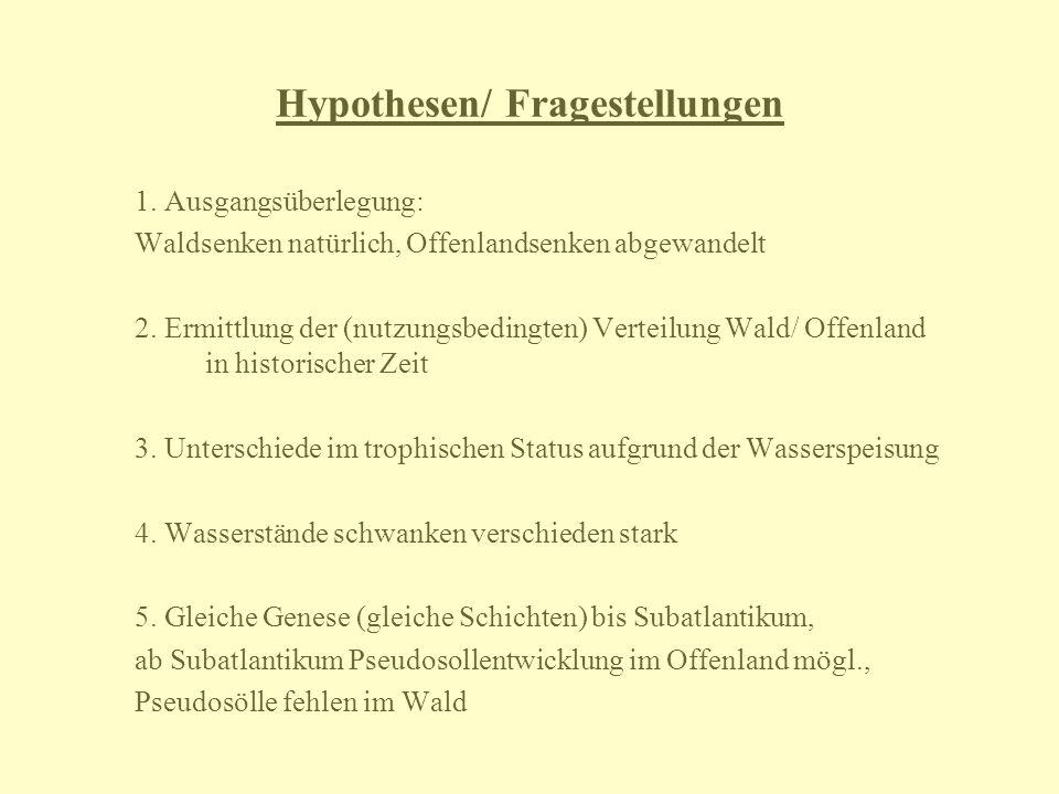 Hypothesen/ Fragestellungen 1. Ausgangsüberlegung: Waldsenken natürlich, Offenlandsenken abgewandelt 2. Ermittlung der (nutzungsbedingten) Verteilung