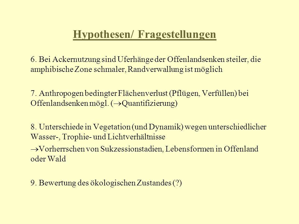 Hypothesen/ Fragestellungen 6. Bei Ackernutzung sind Uferhänge der Offenlandsenken steiler, die amphibische Zone schmaler, Randverwallung ist möglich