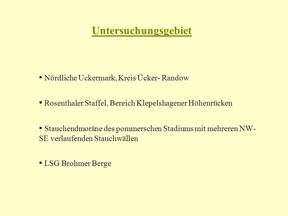Untersuchungsgebiet Nördliche Uckermark, Kreis Ücker- Randow Rosenthaler Staffel, Bereich Klepelshagener Höhenrücken Stauchendmoräne des pommerschen Stadiums mit mehreren NW- SE verlaufenden Stauchwällen LSG Brohmer Berge