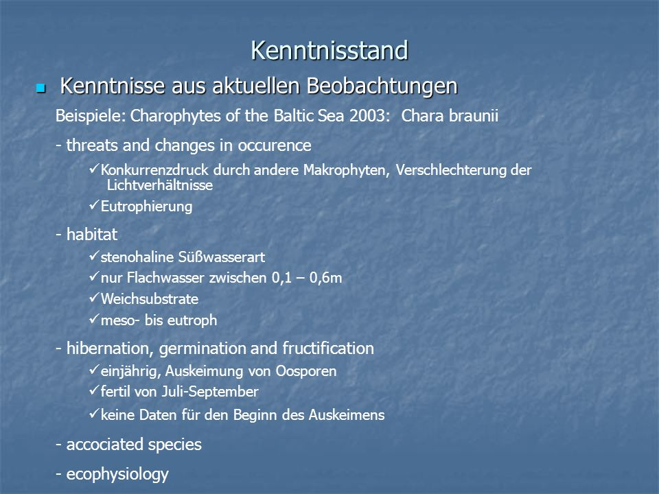 Kenntnisstand Kenntnisse aus aktuellen Beobachtungen Kenntnisse aus aktuellen Beobachtungen Beispiele: Charophytes of the Baltic Sea 2003: Chara braun