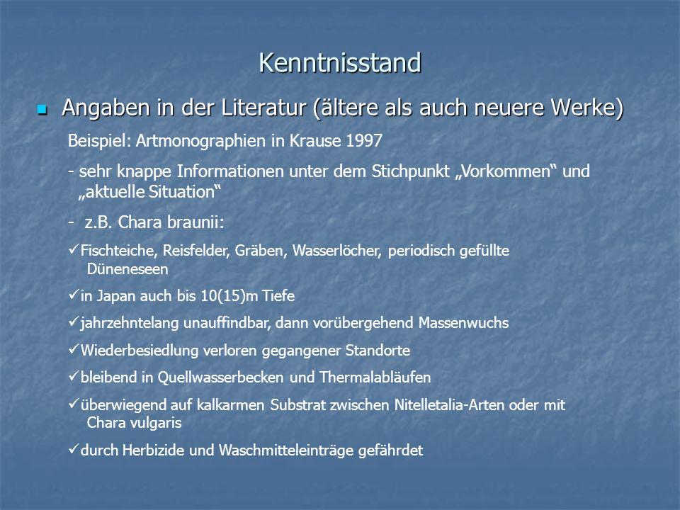 Kenntnisstand Angaben in der Literatur (ältere als auch neuere Werke) Angaben in der Literatur (ältere als auch neuere Werke) Beispiel: Artmonographie