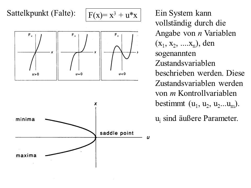 Sattelkpunkt (Falte): F(x)= x 3 + u*x Ein System kann vollständig durch die Angabe von n Variablen (x 1, x 2,....x n ), den sogenannten Zustandsvariab