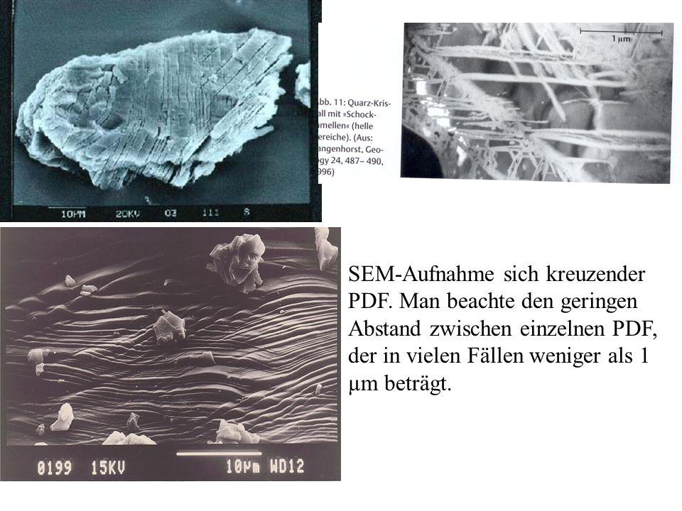 SEM-Aufnahme sich kreuzender PDF. Man beachte den geringen Abstand zwischen einzelnen PDF, der in vielen Fällen weniger als 1 µm beträgt.