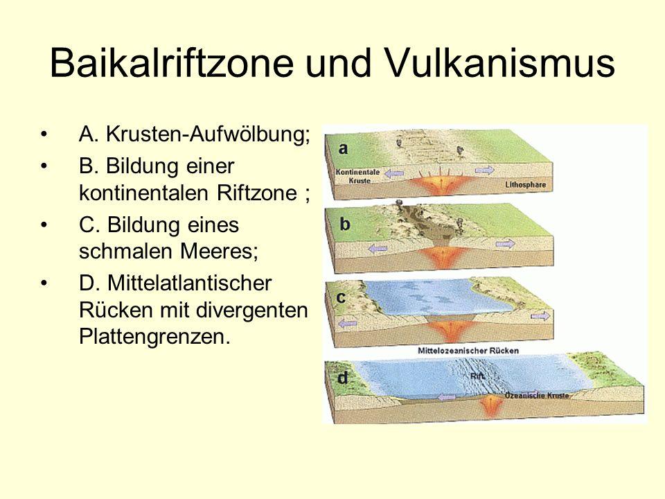 Baikalriftzone und Vulkanismus A. Krusten-Aufwölbung; B. Bildung einer kontinentalen Riftzone ; C. Bildung eines schmalen Meeres; D. Mittelatlantische