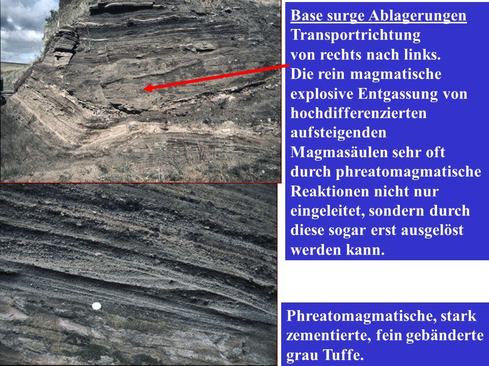 Phreatomagmatische, stark zementierte, fein gebänderte grau Tuffe. Base surge Ablagerungen Transportrichtung von rechts nach links. Die rein magmatisc