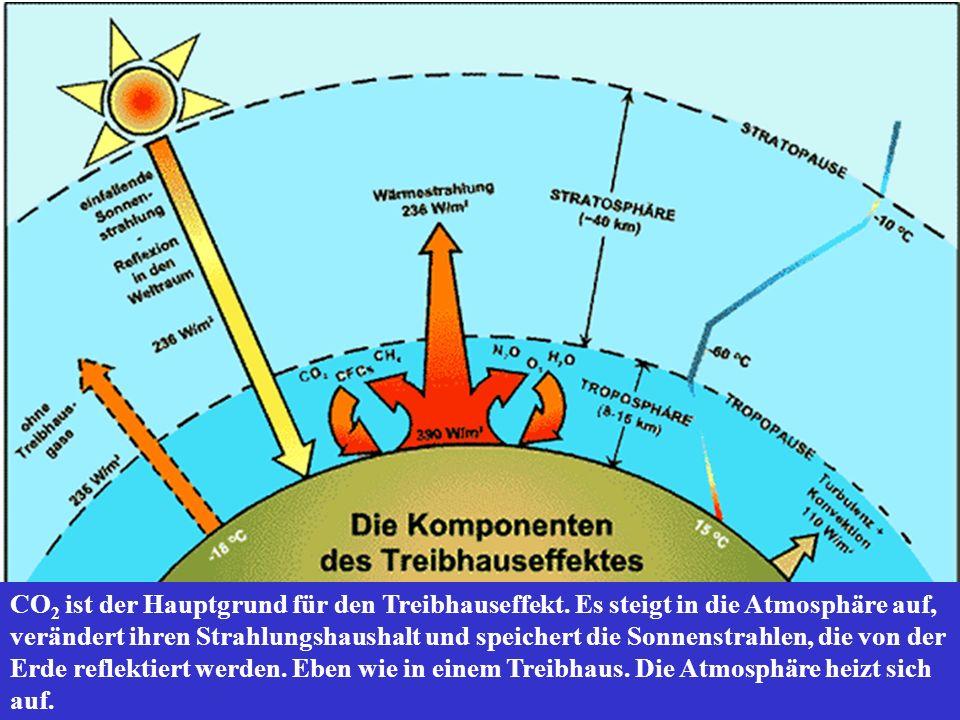 CO 2 ist der Hauptgrund für den Treibhauseffekt. Es steigt in die Atmosphäre auf, verändert ihren Strahlungshaushalt und speichert die Sonnenstrahlen,