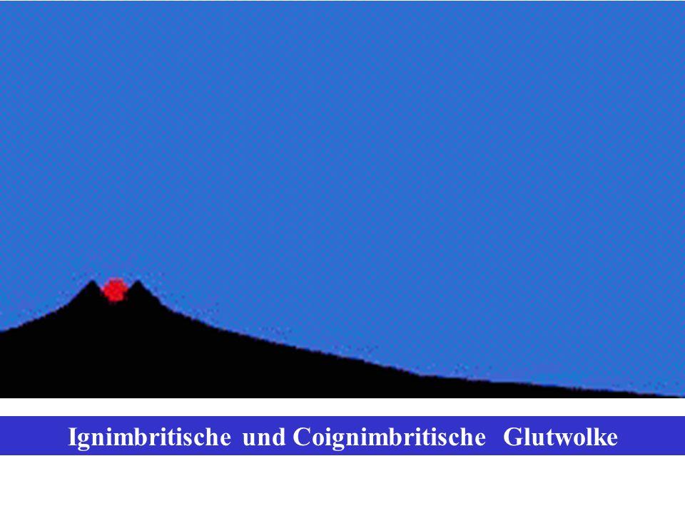Ignimbritische und Coignimbritische Glutwolke