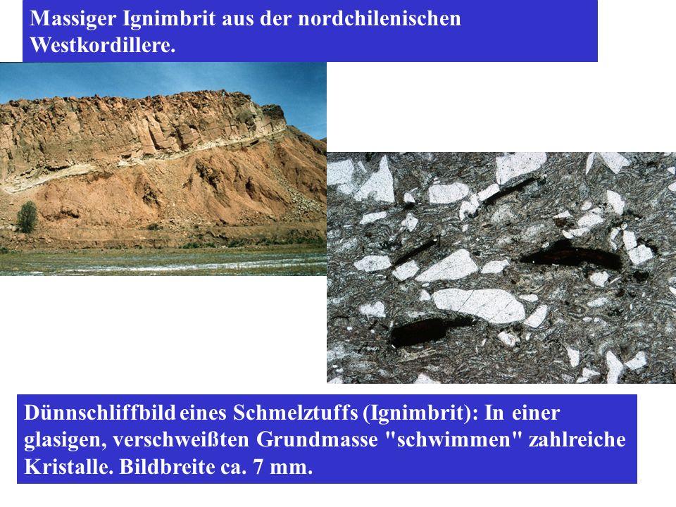 Dünnschliffbild eines Schmelztuffs (Ignimbrit): In einer glasigen, verschweißten Grundmasse