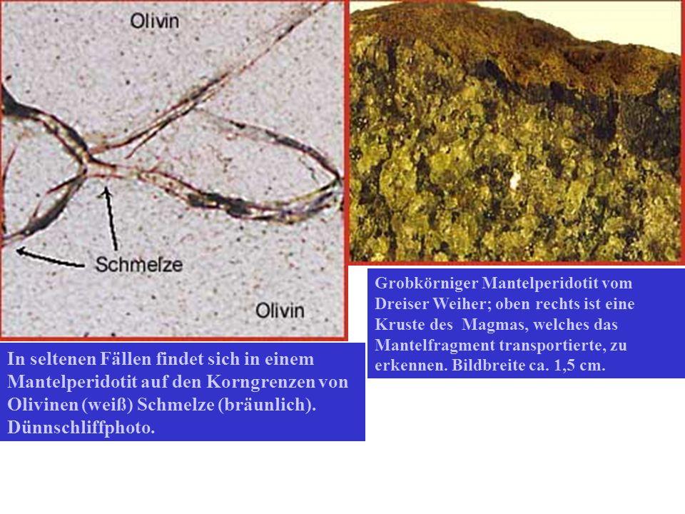 Grobkörniger Mantelperidotit vom Dreiser Weiher; oben rechts ist eine Kruste des Magmas, welches das Mantelfragment transportierte, zu erkennen. Bildb