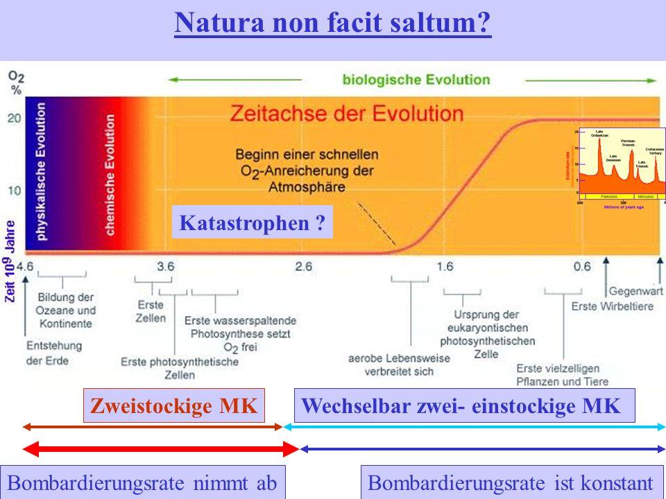 Natura non facit saltum? Bombardierungsrate nimmt abBombardierungsrate ist konstant Katastrophen ? Zweistockige MKWechselbar zwei- einstockige MK