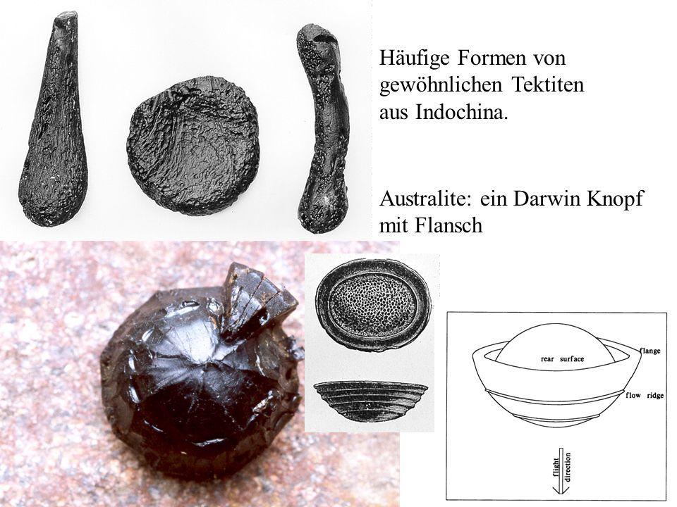 Häufige Formen von gewöhnlichen Tektiten aus Indochina. Australite: ein Darwin Knopf mit Flansch