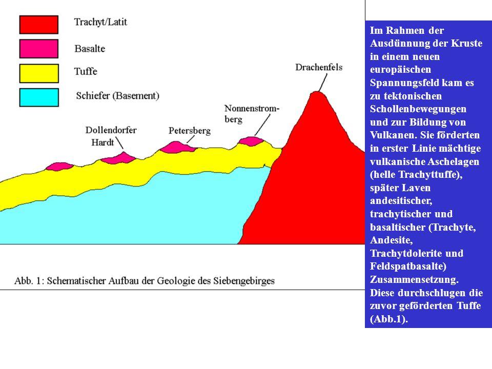 Im Rahmen der Ausdünnung der Kruste in einem neuen europäischen Spannungsfeld kam es zu tektonischen Schollenbewegungen und zur Bildung von Vulkanen.