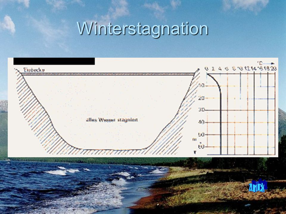 Winterstagnation