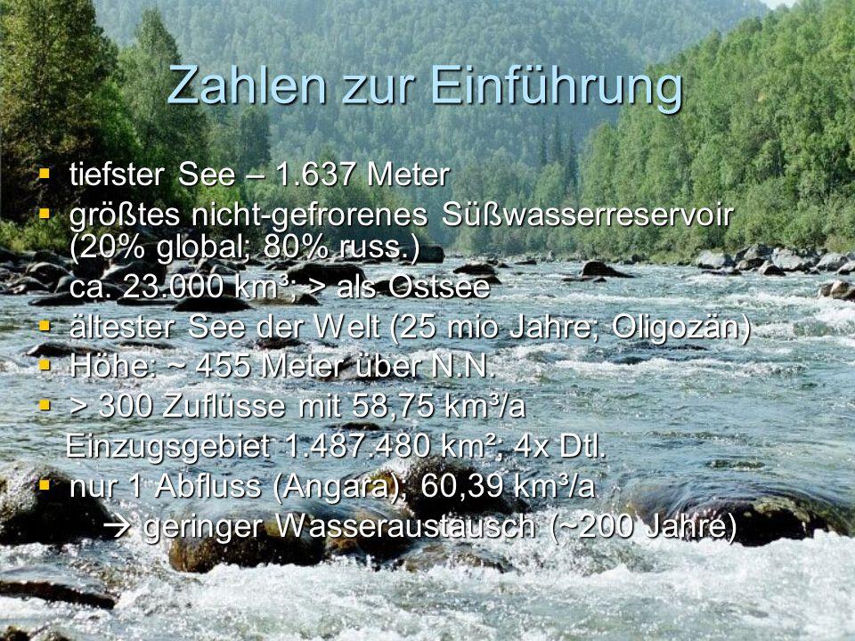 Temperaturverteilung & Zirkulation 3°C Ø an der Oberfläche (Jan.