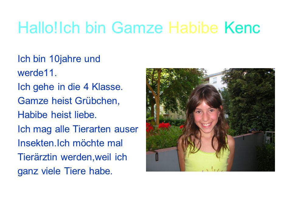 Hallo!Ich bin Gamze Habibe Kenc Ich bin 10jahre und werde11.