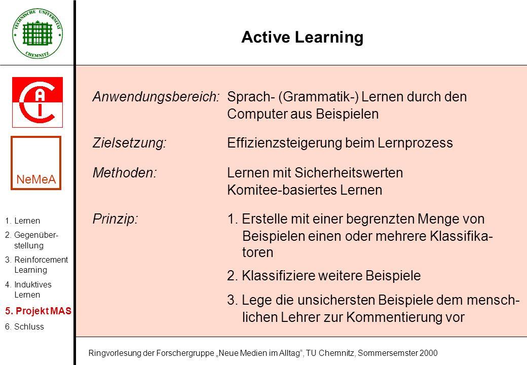 Active Learning 1. Lernen 2. Gegenüber- stellung 3. Reinforcement Learning 4. Induktives Lernen 5. Projekt MAS 6. Schluss NeMeA Ringvorlesung der Fors