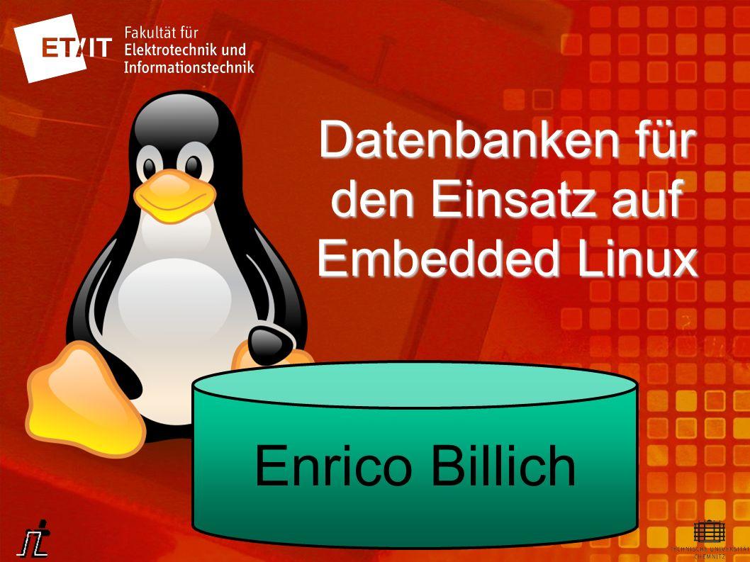 Datenbanken für den Einsatz auf Embedded Linux Enrico Billich