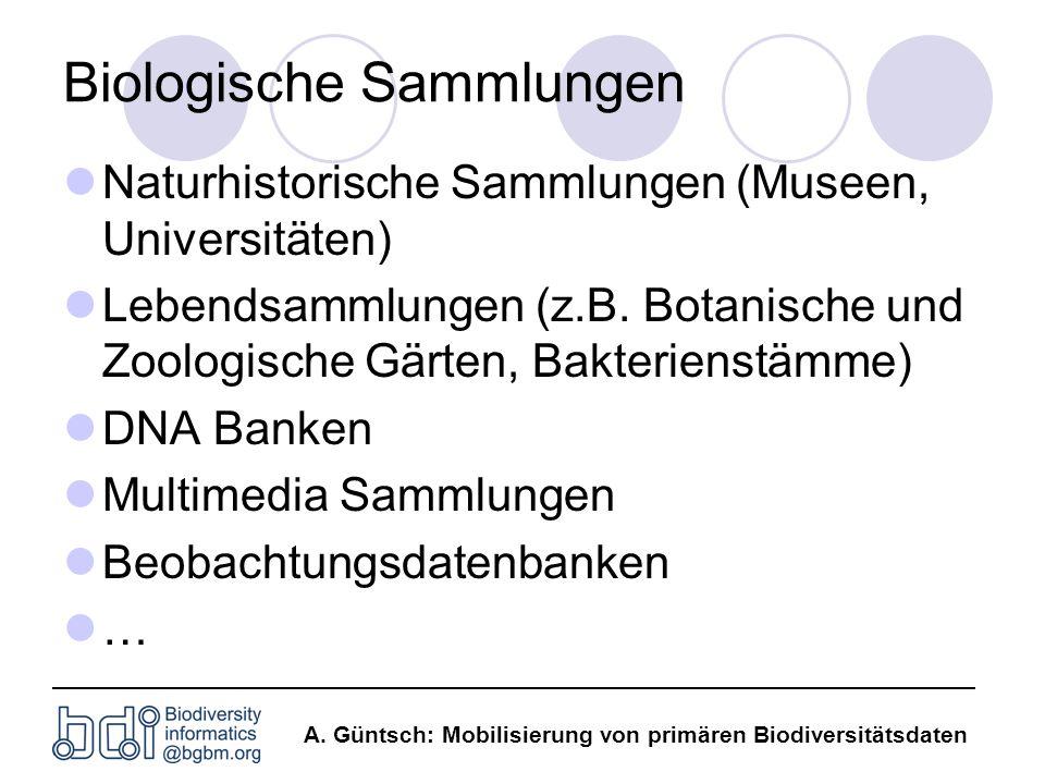 A. Güntsch: Mobilisierung von primären Biodiversitätsdaten Biologische Sammlungen Naturhistorische Sammlungen (Museen, Universitäten) Lebendsammlungen