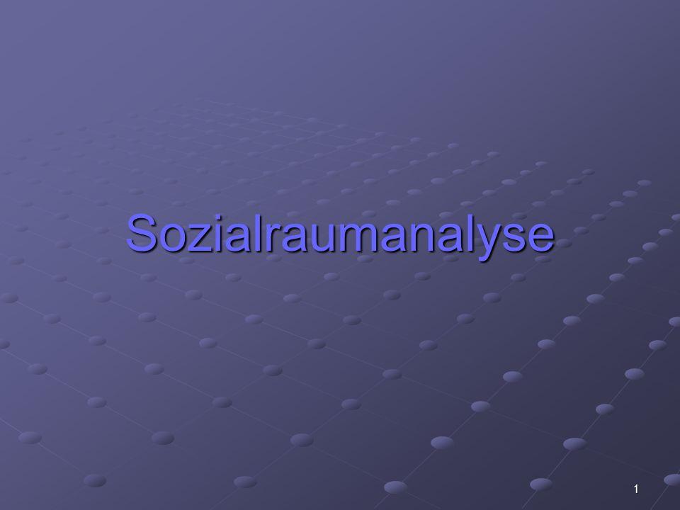 1 Sozialraumanalyse