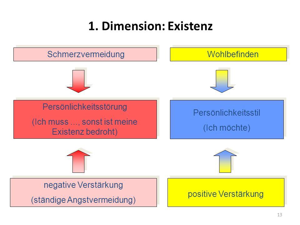13 1. Dimension: Existenz Schmerzvermeidung Wohlbefinden Persönlichkeitsstörung (Ich muss..., sonst ist meine Existenz bedroht) Persönlichkeitsstörung