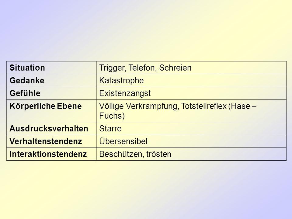 SituationTrigger, Telefon, Schreien GedankeKatastrophe GefühleExistenzangst Körperliche EbeneVöllige Verkrampfung, Totstellreflex (Hase – Fuchs) Ausdr