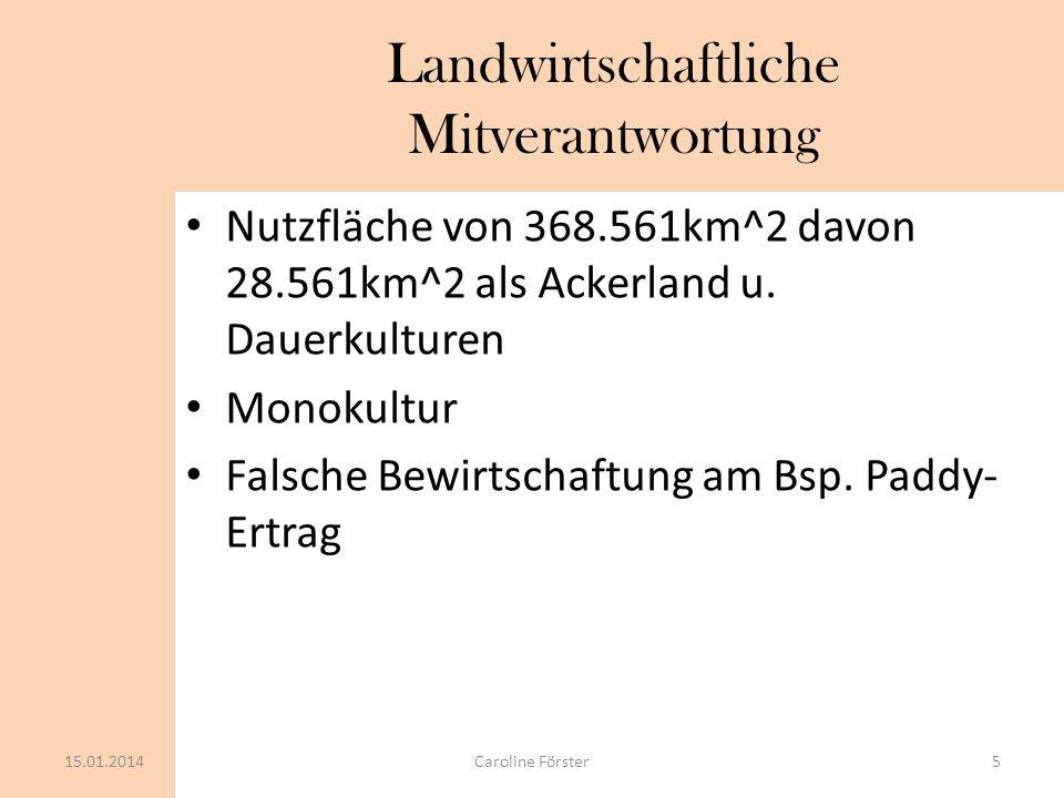 Landwirtschaftliche Mitverantwortung Nutzfläche von 368.561km^2 davon 28.561km^2 als Ackerland u. Dauerkulturen Monokultur Falsche Bewirtschaftung am