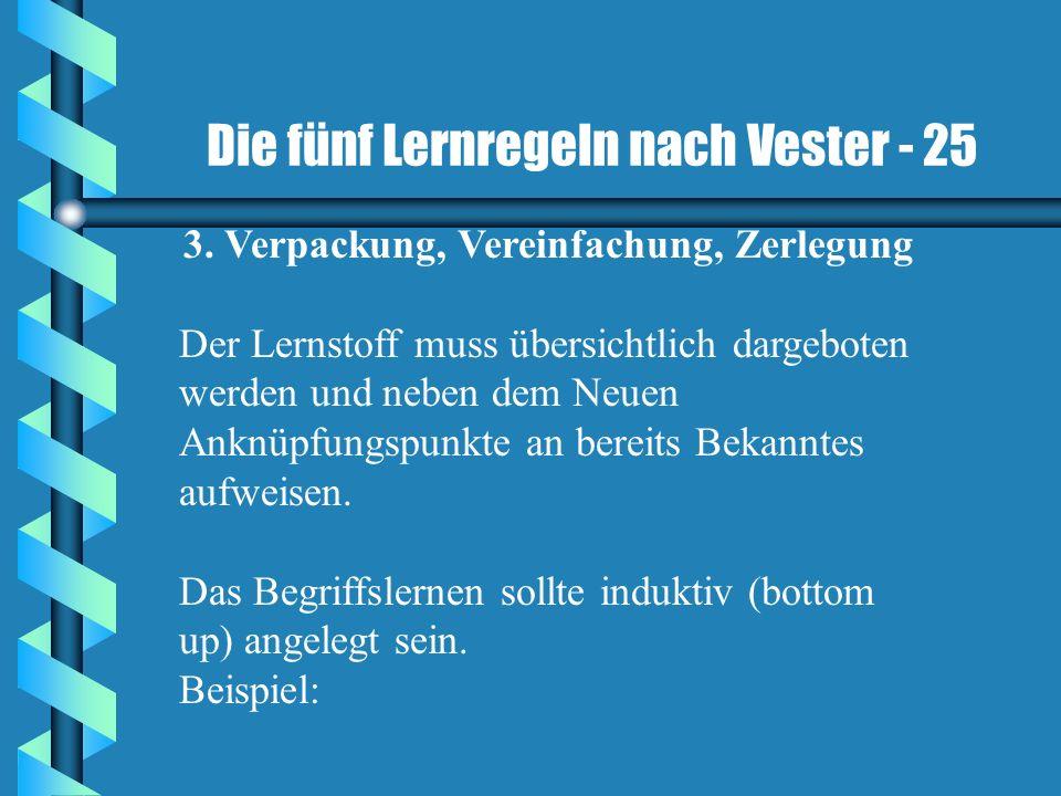 Die fünf Lernregeln nach Vester - 25 3. Verpackung, Vereinfachung, Zerlegung Der Lernstoff muss übersichtlich dargeboten werden und neben dem Neuen An