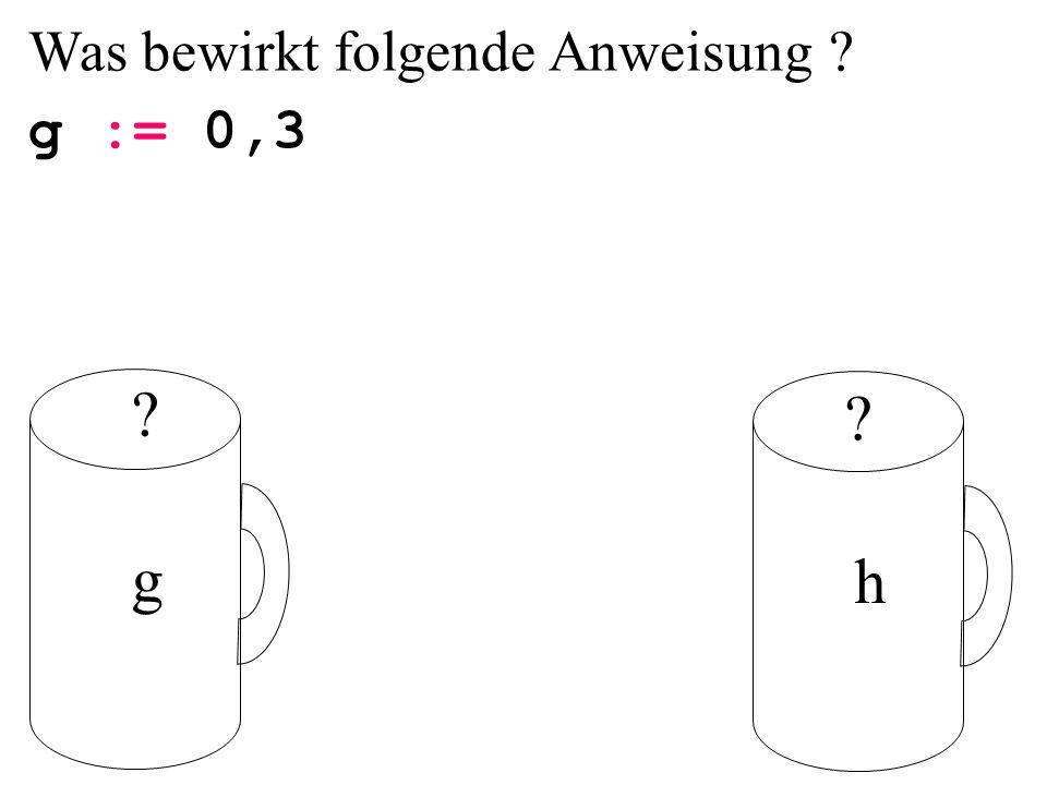 Was bewirkt folgende Anweisung ? g := 0,3 g h ? ?