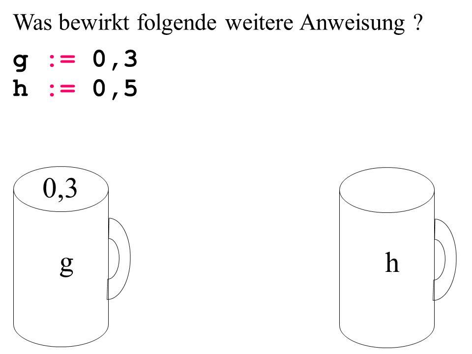 Was bewirkt folgende weitere Anweisung ? g := 0,3 g h 0,3 h := 0,5