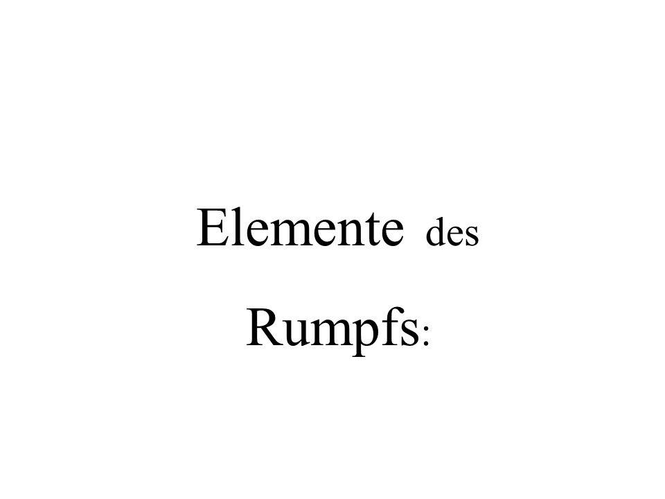 Elemente des Rumpfs :