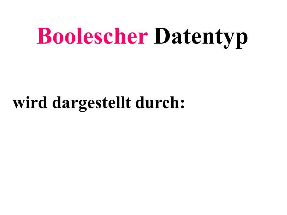 Boolescher Datentyp wird dargestellt durch: