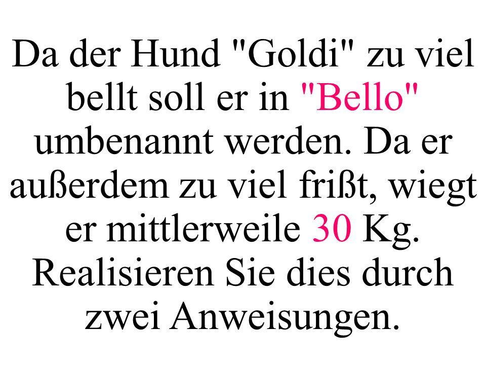 Da der Hund Goldi zu viel bellt soll er in Bello umbenannt werden.