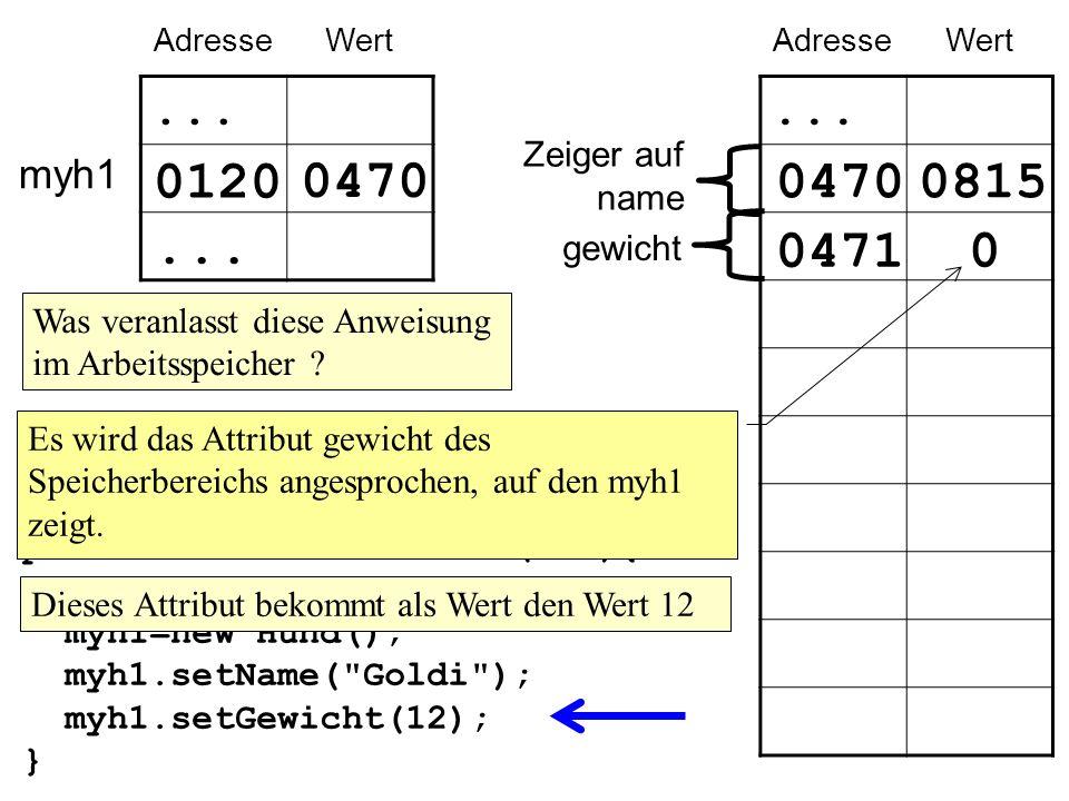 myh1 AdresseWert...0120...