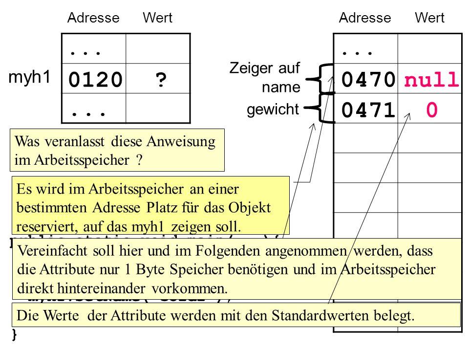 myh1 AdresseWert...0120... public static void main(...){...