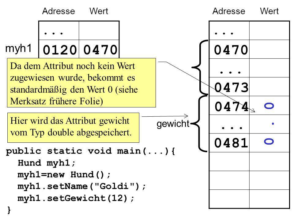 myh1 AdresseWert... 0120... public static void main(...){ Hund myh1; myh1=new Hund(); myh1.setName(