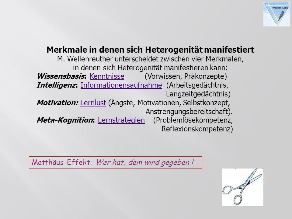 Merkmale in denen sich Heterogenität manifestiert M. Wellenreuther unterscheidet zwischen vier Merkmalen, in denen sich Heterogenität manifestieren ka