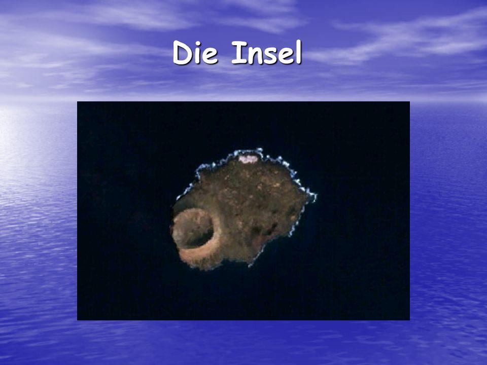 Die Insel Die Insel