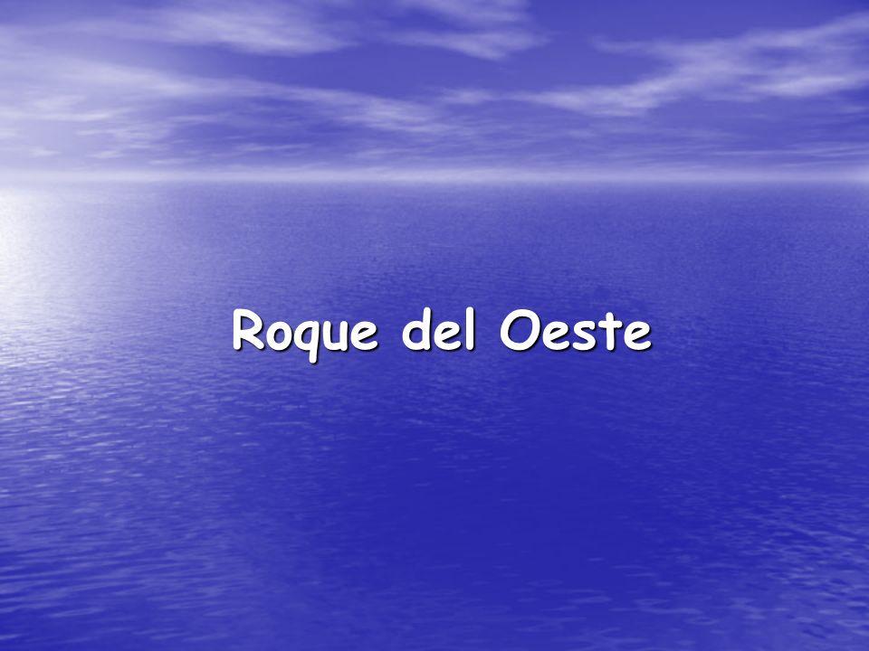 Roque del Oeste Roque del Oeste