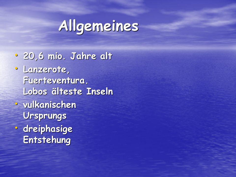 Allgemeines Allgemeines 20,6 mio.Jahre alt 20,6 mio.